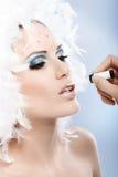 Narządzanie zimy fachowy makeup Obraz Royalty Free