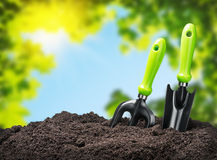 Narzędzie ogródu ziemia na natury tle Fotografia Stock