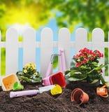 Narzędzie ogródu ziemia na naturze Zdjęcia Stock