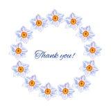 Narzisse blüht Hand gezeichnete Aquarellvektor-Malereiillustration, runden mit Blumenrahmen, buntes dekoratives Kräuter Lizenzfreie Stockfotos