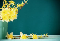 Narzisse im Vase lizenzfreies stockbild