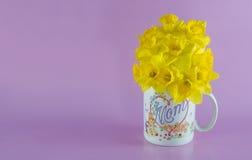 Narzissen-Blumenstrauß in der Mutter-Kaffeetasse auf rosa Hintergrund Stockfoto