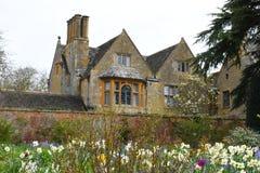 Narzissen, Hidcote-Landsitz-Garten, Campden abbrechend, Gloucestershire, England Lizenzfreies Stockfoto