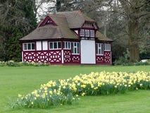 Narzissenbetten durch das Summerhouse, Chorleywood-Haus-Zustand stockbild