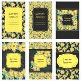 Narzissenblumen-Kartensatz Lizenzfreies Stockbild