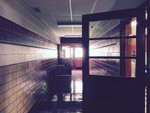 Nasłoneczniony korytarz z Świeżo Okrzesaną podłoga Zdjęcia Royalty Free