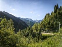 Nas montanhas Fotos de Stock