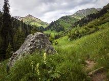 Nas montanhas Fotos de Stock Royalty Free