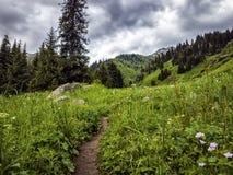Nas montanhas Fotografia de Stock Royalty Free