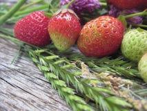 Nas orelhas da grama de centeio maduras e em morangos verdes A vida é ficada situada ainda em uma tabela de carvalho cinzenta fotos de stock