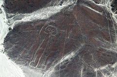 Nasca linjer, Peru Royaltyfri Foto