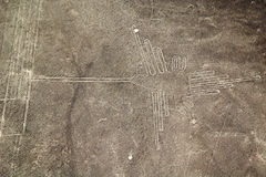 Nasca linjer, Peru Royaltyfri Fotografi