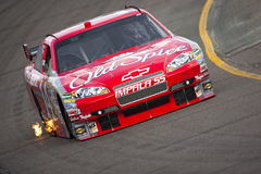 NASCAR: Ελεγκτής O'Reilly 500 13 Νοεμβρίου Στοκ εικόνα με δικαίωμα ελεύθερης χρήσης