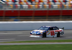 NASCAR 08 - Dale Earnhardt Jr Royalty Free Stock Photo