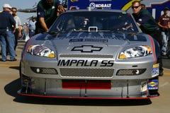 NASCAR 2008 All Star Dale Jr' Stock Images