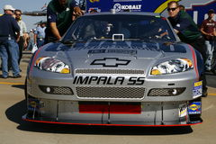 NASCAR 2008 todo el valle Jr de la estrella Imagenes de archivo