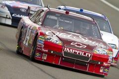 NASCAR: 21 februari AutoClub 500 Royalty-vrije Stock Afbeeldingen