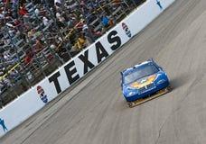 NASCAR: 8 Νοεμβρίου Dickies 500 Στοκ Φωτογραφία