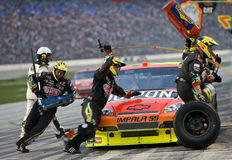 NASCAR: 8 november Dickies 500 Royalty-vrije Stock Afbeeldingen