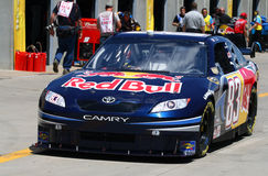 NASCAR - #83 Red Bull Laufen Stockfoto