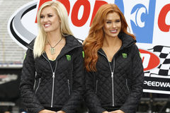 NASCAR: April 24 Food City 500. April 24, 2017 - Bristol, Tennessee , USA: The Monster Energy girls wait in victory lane at the Food City 500 at Bristol Motor royalty free stock photo