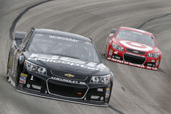 NASCAR :  5 avril Duck Commander 500 Photographie stock libre de droits