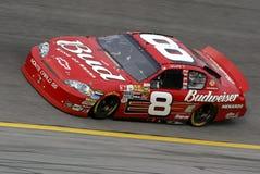 NASCAR Bestuurder Dale Earnhardt Jr stock fotografie