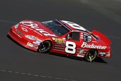 NASCAR Bestuurder Dale Earnhardt Jr stock afbeelding