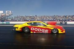 NASCAR: Breng het Koninkrijk Gatornationals van 11 Band in de war Stock Foto