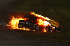NASCAR: 20 de novembro FORD EcoBoost 400 Imagem de Stock Royalty Free