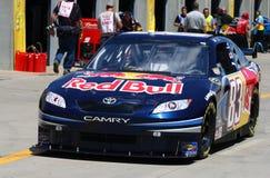 NASCAR - el competir con de #83 Red Bull Foto de archivo
