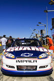 NASCAR - El ventilador joven controla hacia fuera el coche de #88 de Earnhardt Foto de archivo