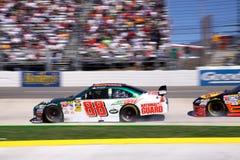 NASCAR - Junior Smokin' the Tires Stock Images