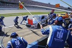 NASCAR: Maj 07 GEICO 500 Arkivbilder