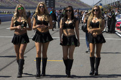 NASCAR: Mar 21 Drive4Clots com 300 Zdjęcie Royalty Free