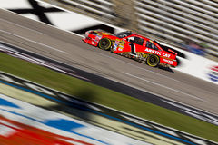NASCAR:  Nov 06 AAA Texas 500. FORT WORTH, TX - NOV 06, 2010:  Jamie McMurray (1) brings his Bass Pro Shops Chevrolet through the frontstretch during a practice Royalty Free Stock Images
