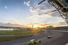 NASCAR: 22 nov. FORD EcoBoost 400 Stock Foto's