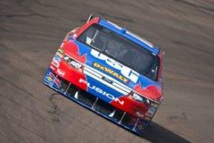 NASCAR: November 13 AutoDelen van O'Reilly van de Controleur royalty-vrije stock foto