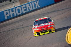 NASCAR:  November 13 Checker O'Reilly Auto Parts Royalty Free Stock Image