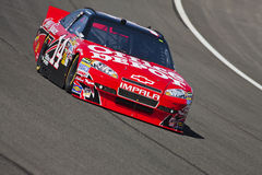 NASCAR:  Oct 08 Pepsi Max 400 Royalty Free Stock Photo