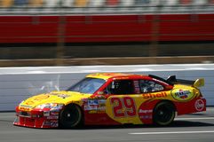 NASCAR - SP1 van Harvick van 2008 #29 Royalty-vrije Stock Fotografie