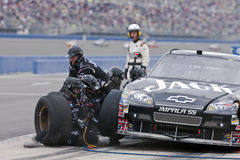 NASCAR:  Sprint Cup Series Auto Club 500 Feb 22 Royalty Free Stock Photo
