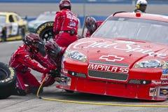 NASCAR:  Sprint Cup Series Auto Club 500 Feb 22 Royalty Free Stock Photos