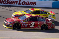 NASCAR Sprint filiżanki pościg kierowca Kevin Harvick Zdjęcie Royalty Free