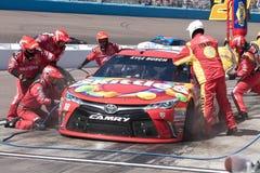 NASCAR sprintar koppserier på Phoenix Fotografering för Bildbyråer