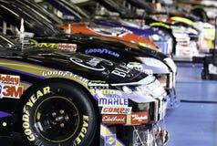NASCAR - Vinnarerad Royaltyfria Bilder