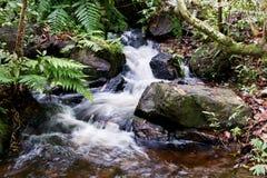 Nascente de água Foto de Stock Royalty Free