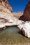 Nascente de água no deserto - Omã Imagem de Stock