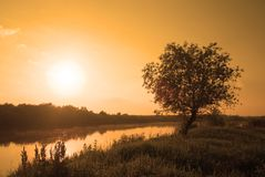 Nascer do sol Imagem de Stock