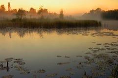 Nascer do sol acima da cama de rio velha no Polônia foto de stock royalty free